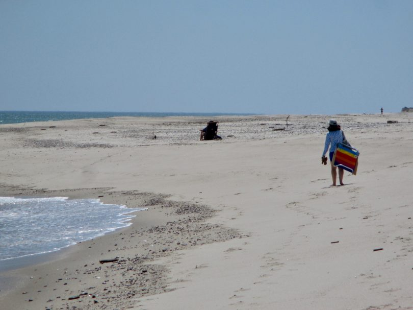 Nauset Beach May