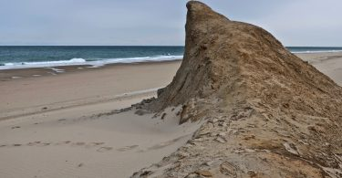 Ballston Beach Sand Shark