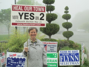"""Linda """"Lin"""" Whitehead makes her point in the fog and clutter of signs."""